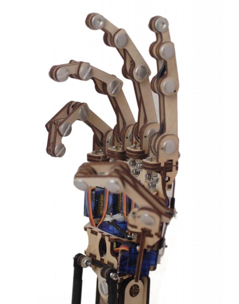 Roy's Hand